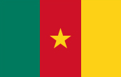 courier to Cameroon